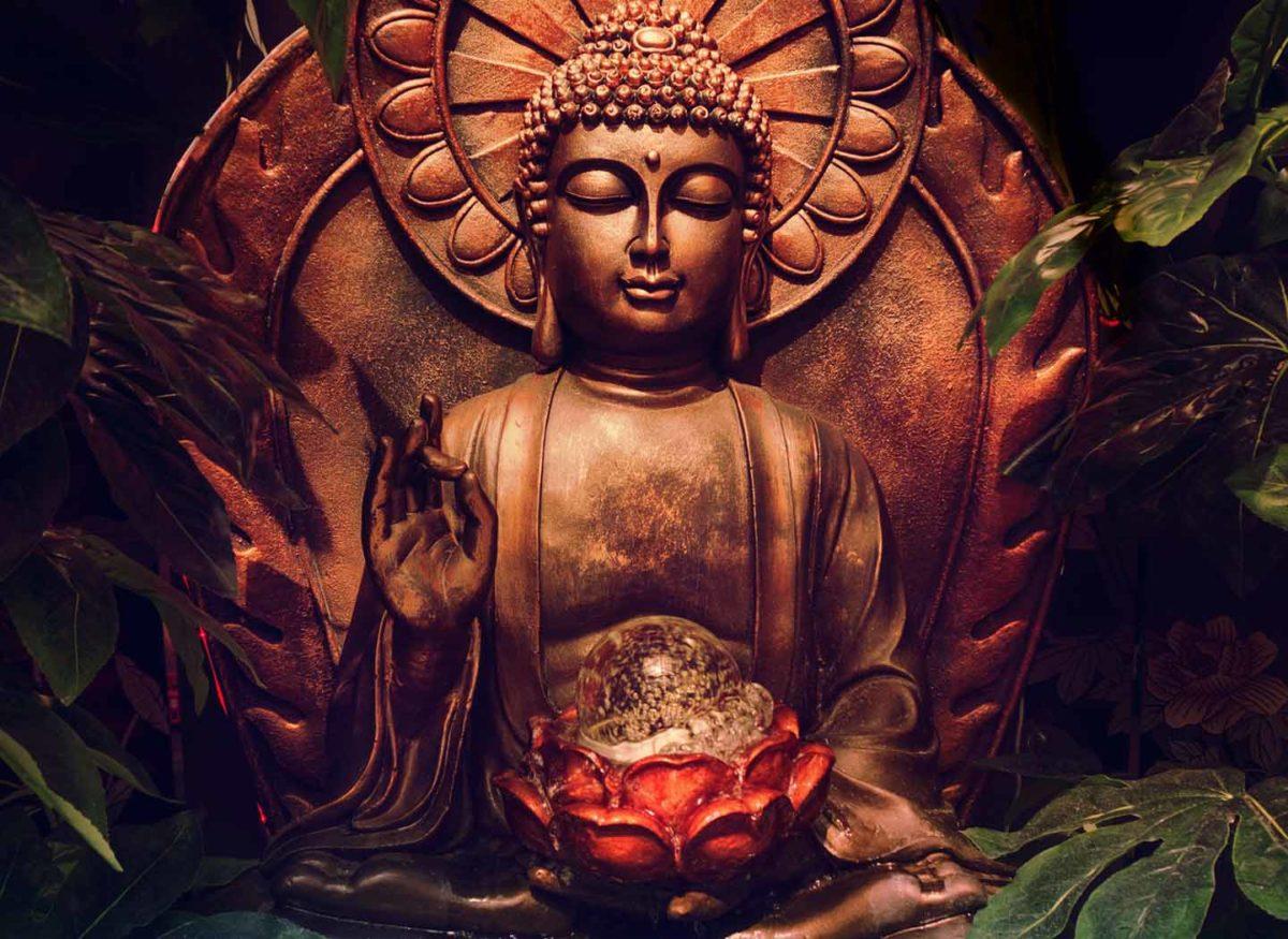 Type of meditator