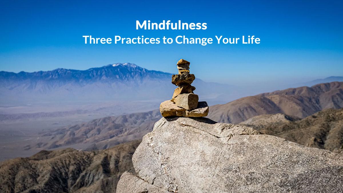 Mindfulness Black Lotus Meditation App
