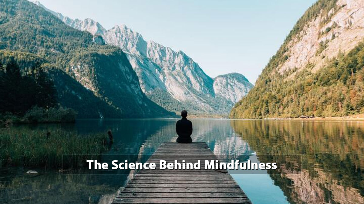Science Behind Mindfulness